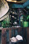 Matkapostaus: Tahiti