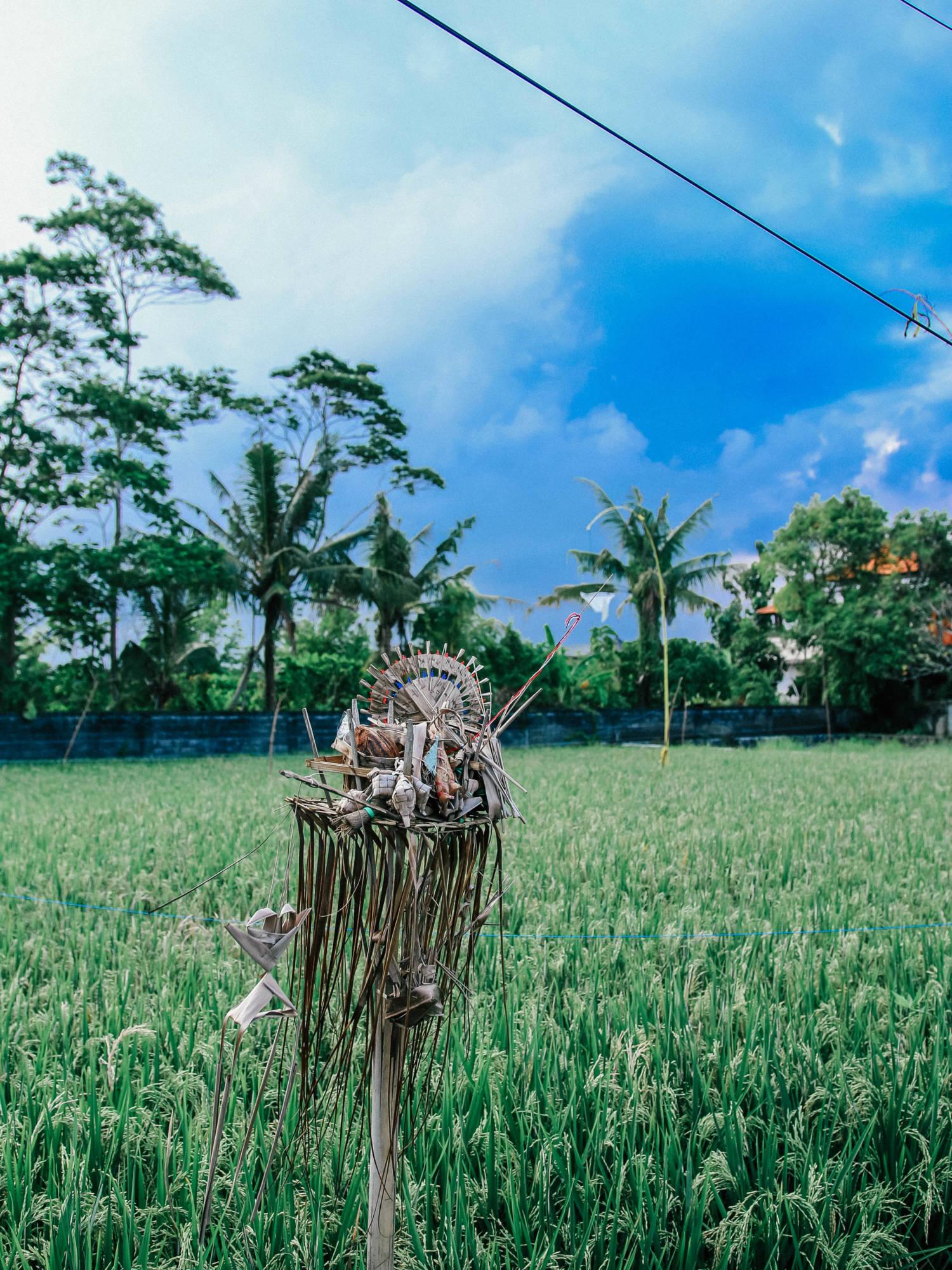 Kootut vinkkini Balille