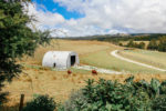 Waipu Cove ja farmstay-unelmaa